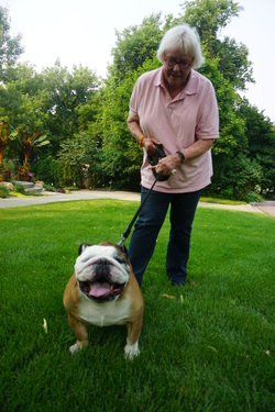 The Pet Sitters customer with dog, Minneapolis, Minnesota